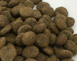 画像1: フィッシュワン ライトシニア(肥満犬・シニア犬用)
