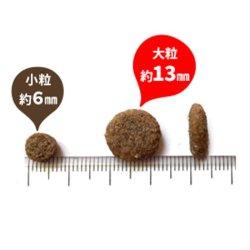 画像2: パーフェクション サーモン小粒/大粒 20kg